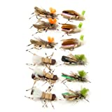 Trout Fly Assortment - Foam Body High Visibility Grasshopper Dry Fly Collection 1 Dozen Flies
