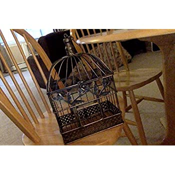 Vintage Bird Cage, Rectangular, 14 in. & 17 in., Black & Gold, Set of 2