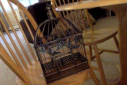 Vintage Bird Cage, Rectangular, 14 in. & 17 in., Black & Gold, Set of 2 2