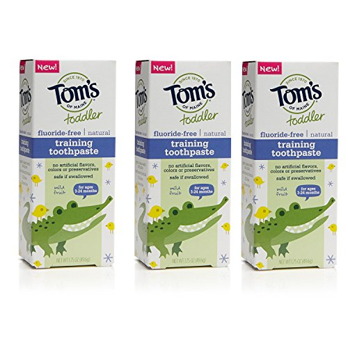 toms-of-maine-toddlers-fluoride-free-natural-toothpaste-in-gel-mild-fruit-175-ounce-3-count