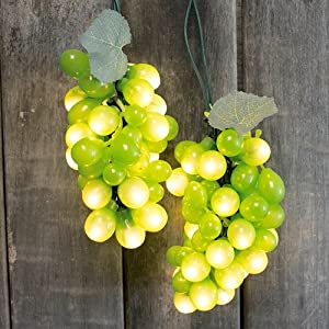 Outdoor String Lights Grapes : Amazon.com : Grape Vine String Lights, Indoor/Outdoor, 6 Feet, 5 Clusters, Green : Patio, Lawn ...