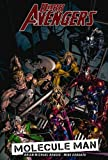 Dark Avengers, Vol. 2: Molecule Man