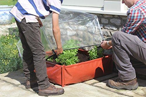 Tierra Garden 50 6040 Haxnicks Easy Poly Lantern Cloche