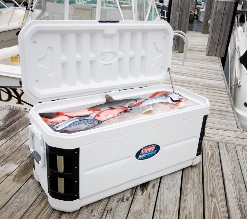 Coleman 200 Quart Xp H2o Marine Cooler Best Yeti Cooler Appliances