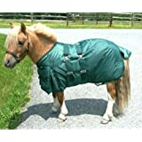 Intrepid International Miniature Horse Turnout Blanket