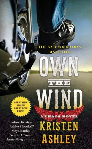 Image of Own the Wind: A Chaos Novel