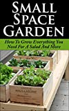 Small Space Garden: How To Grow Everything You Need For A Salad And More (Small Space, Tiny Home, Container Garden, Edible Garden, Green Thumb, Beginner Garden)