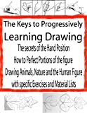 Progressive Drawing for the Beginner | Free Drawing | Drawing Sketches (The Secrets of Drawing Book 2) (English Edition)