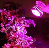 E27 10W LED Grow Light,Sumilulu Flower Indoor Plant Hydroponics Full Spectrum Lamp