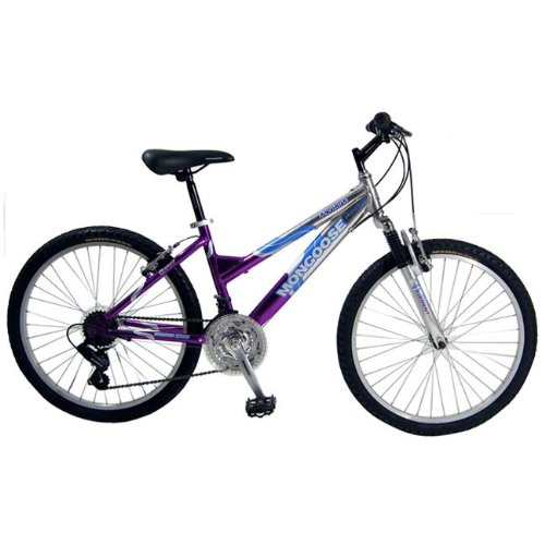 Mongoose Montana Girls' Mountain Bike (24-Inch Wheels, Pink/Silver)