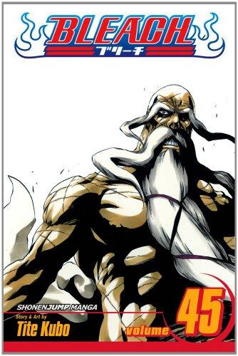 Bleach, Vol. 45 (Bleach (Graphic Novels))