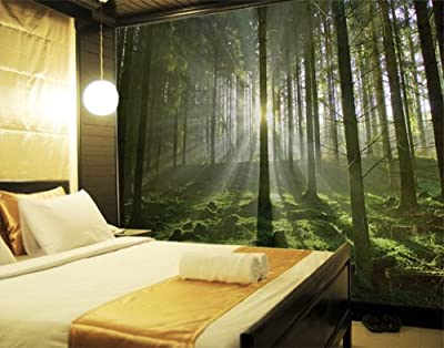 Giant Wall Mural / Photo Wallpaper Fairy Tale Forest 400 x 280 cm