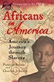 Africans in America: America's Journey Through Slavery (0151003394) by Smith, Patricia