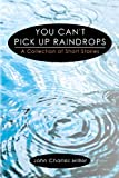 img - for You Can't Pick Up Raindrops: A Collection of Short Stories book / textbook / text book