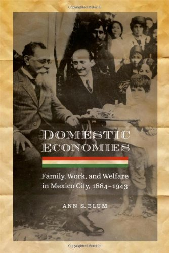 domestic-economies-family-work-and-welfare-in-mexico-city-1884-1943