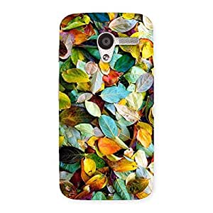 Impressive Colorfull Leafs Back Case Cover for Moto X