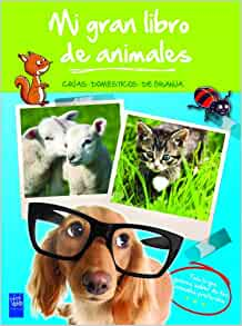 Mi gran libro de animales verde: 9788408008491: Amazon.com: Books
