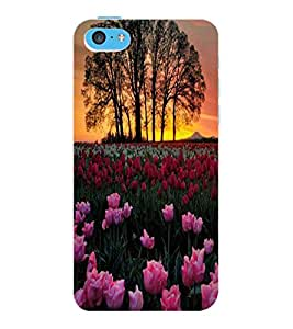 ColourCraft Lovely Flowers Design Back Case Cover for APPLE IPHONE 5C