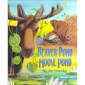 Beaver Pond / Moose Pond