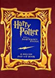 Harry Potter and the Sorcerer's Stone: A Deluxe Pop-Up Book (0439294827) by Jill Daniels
