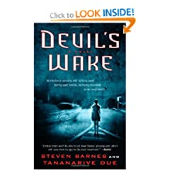 Devil's Wake: A Novel by Steven Barnes and Tananarive Due