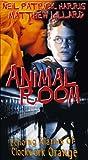 Animal Room [VHS]