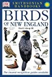 Smithsonian Handbooks: Birds of New England (Smithsonian Handbooks)
