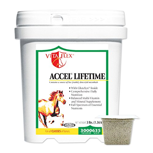 Accel Lifetime With Gluta-Syn 10 Lb (160 Days)
