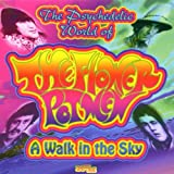 Flower Pot Men A Walk in the Sky: the Very Best of the Flowerpot Men