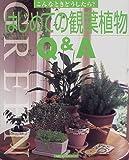 はじめての観葉植物Q&A (主婦の友生活シリーズ?こんなときどうしたら?) (主婦の友生活シリーズ?こんなときどうしたら?)