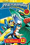 MegaMan NT Warrior Comics
