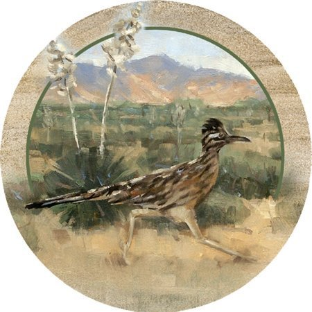 Thirstystone Stoneware Roadrunner Coaster, Multicolor