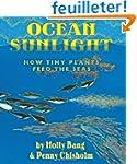 Ocean Sunlight: How Tiny Plants Feed...