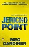 Jericho Point: An Evan Delaney Novel
