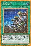 遊戯王 同胞の絆(ミレニアムゴールドレア)ミレニアムボックス ゴールドエディション(MB01) シングルカード MB01-JP002-GR
