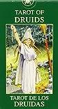 Tarot of Druids Mini
