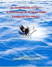 ¿En Dónde Quedó mi País?... La Construcción de un Nuevo Orden Establecido Para México.: Diseño de un nuevo sistema económico, político y cultural.
