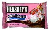 ハーシー バレンタイン ミニチュアチョコレート240g