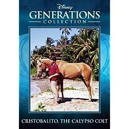 Cristobalito; the Calypso Colt