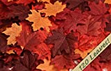 120 Artificial Fall Maple Leaves in a Mixture of Autumn Colors - Great Autumn Table Scatters for Fall Weddings & Autumn Parties