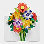 SABUDA BOUQUET BOXED POP UP NOTECARDS