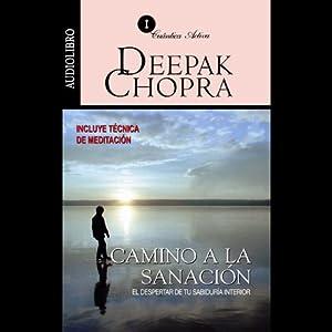 Camino a la Sanación [Journey into Healing] Audiobook