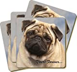 4x Fawn Pug Dog 'Yours Forever' Picture Coasters Gift Set, Ref:AD-P1yC