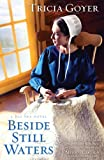 Beside Still Waters (A Big Sky Novel Book 1) (English Edition)