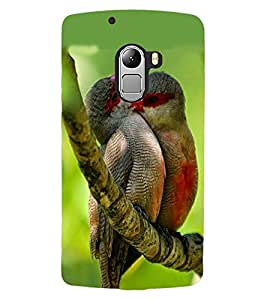 ColourCraft Love Birds Design Back Case Cover for LENOVO A7010