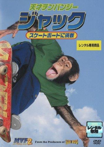 天才チンパンジージャック スケートボードに挑戦