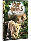 Baby Animals in the Wild (3 Hour Documentary)
