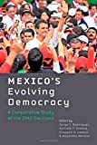 img - for Mexico's Evolving Democracy: A Comparative Study of the 2012 Elections book / textbook / text book