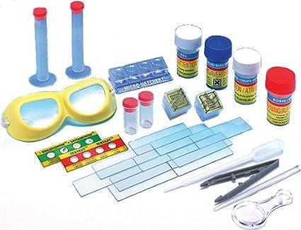 Elenco Slide Making Kit