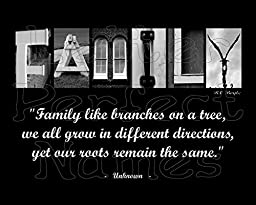 000 - Alphabet Photo - FAMILY (Tree) - Inspirational / Motivational Wall Art 8X10 Photograph Matted with Word / Letter Art Photography.